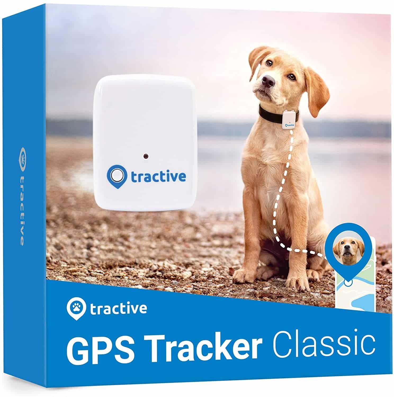 hunde-gps-tracker-min
